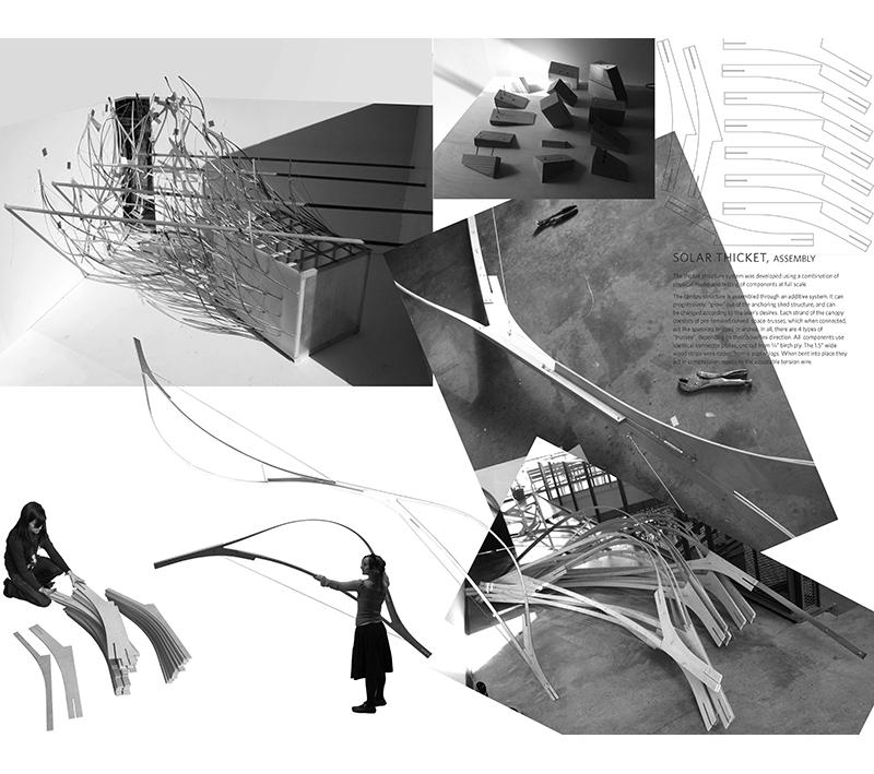 fallow-city-book5.jpg